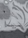 Copertina Michele Carillo si stampi